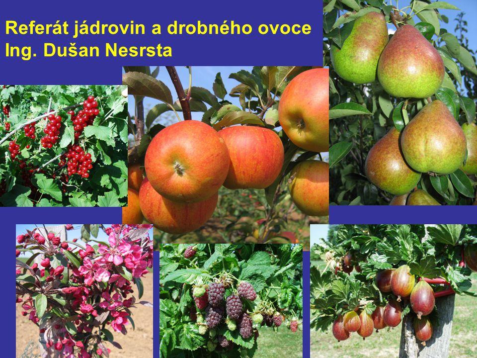 Referát jádrovin a drobného ovoce