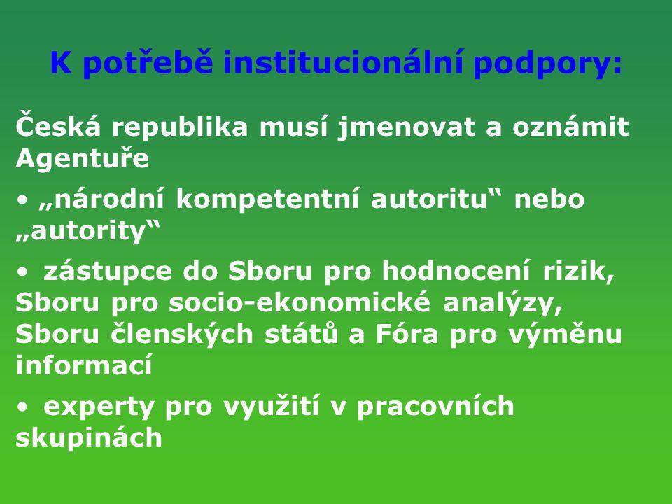 K potřebě institucionální podpory: