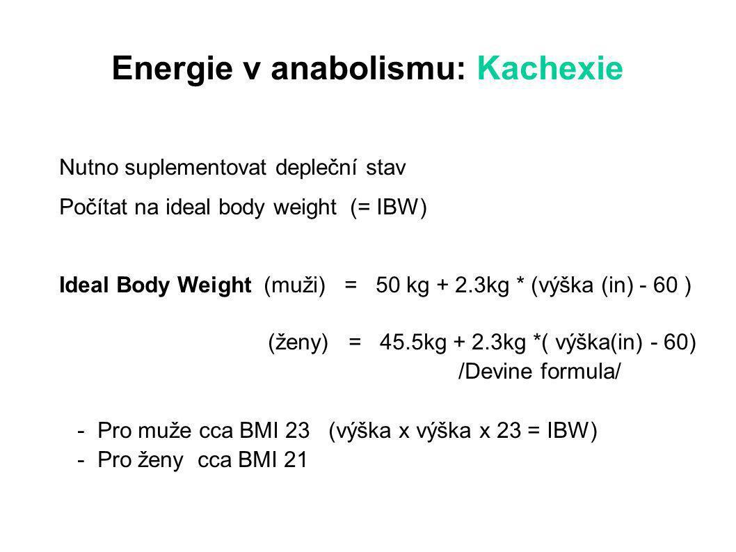Energie v anabolismu: Kachexie