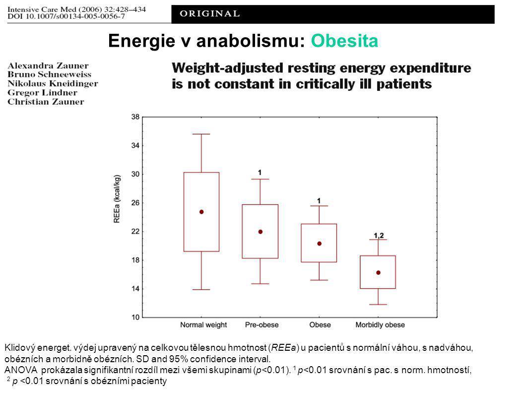 Energie v anabolismu: Obesita
