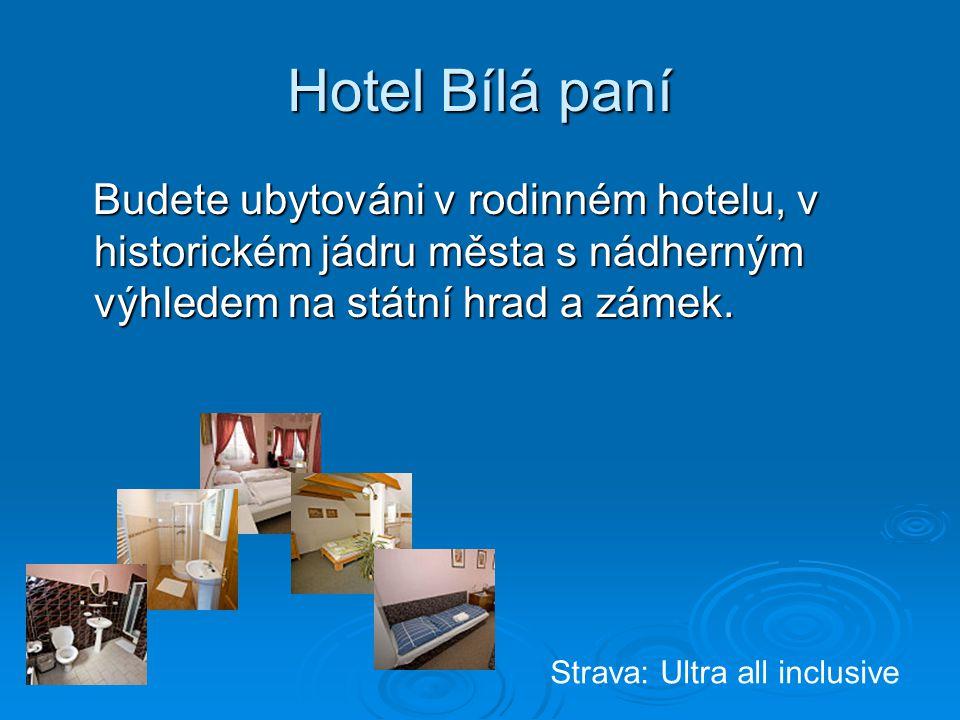 Hotel Bílá paní Budete ubytováni v rodinném hotelu, v historickém jádru města s nádherným výhledem na státní hrad a zámek.