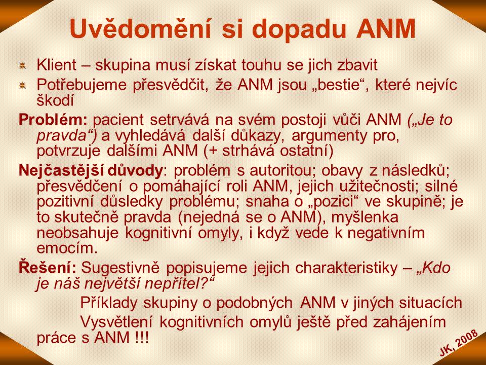 Uvědomění si dopadu ANM