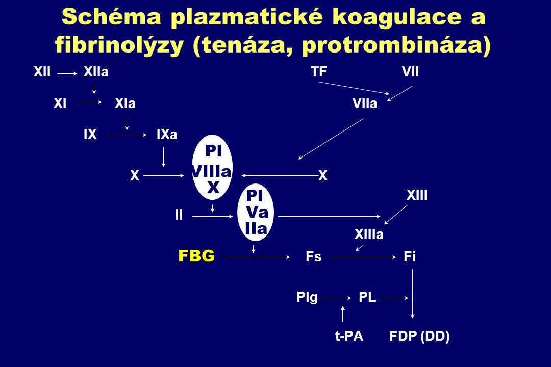 Schéma plazmatické koagulace a fibrinolýzy (tenáza, protrombináza)