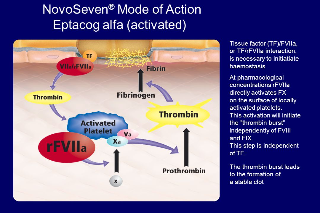 NovoSeven® Mode of Action Eptacog alfa (activated)