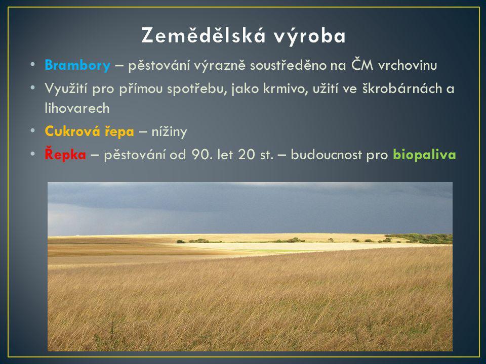 Zemědělská výroba Brambory – pěstování výrazně soustředěno na ČM vrchovinu.