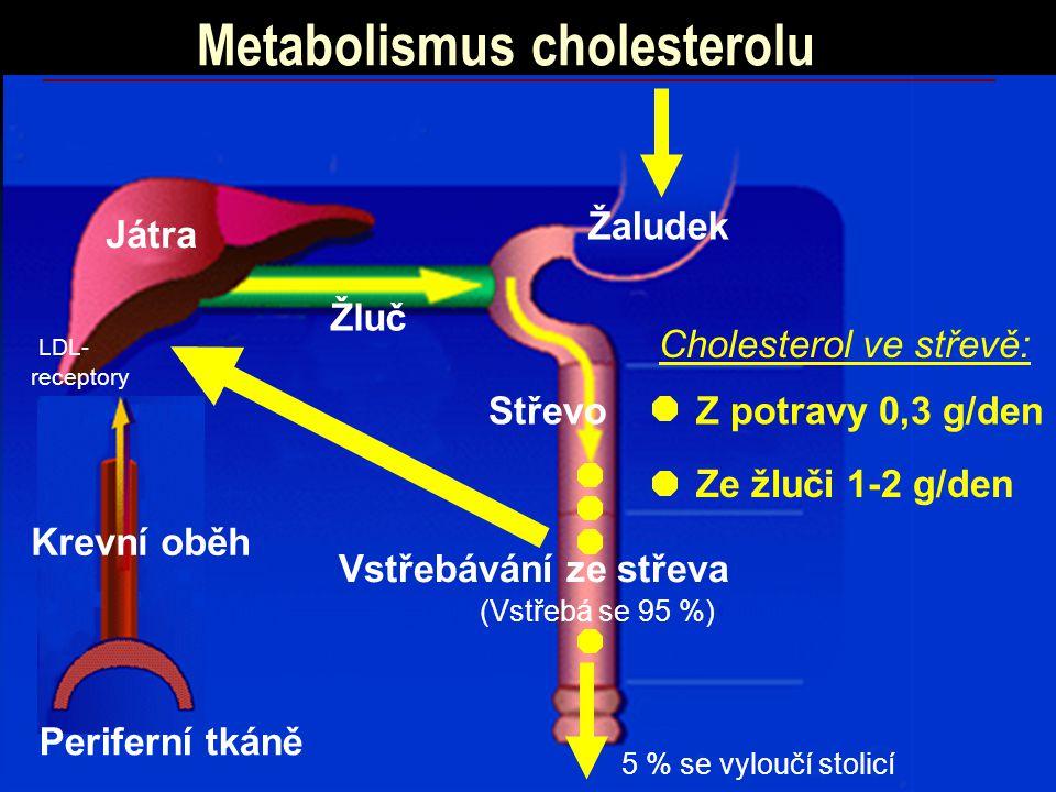 Metabolismus cholesterolu