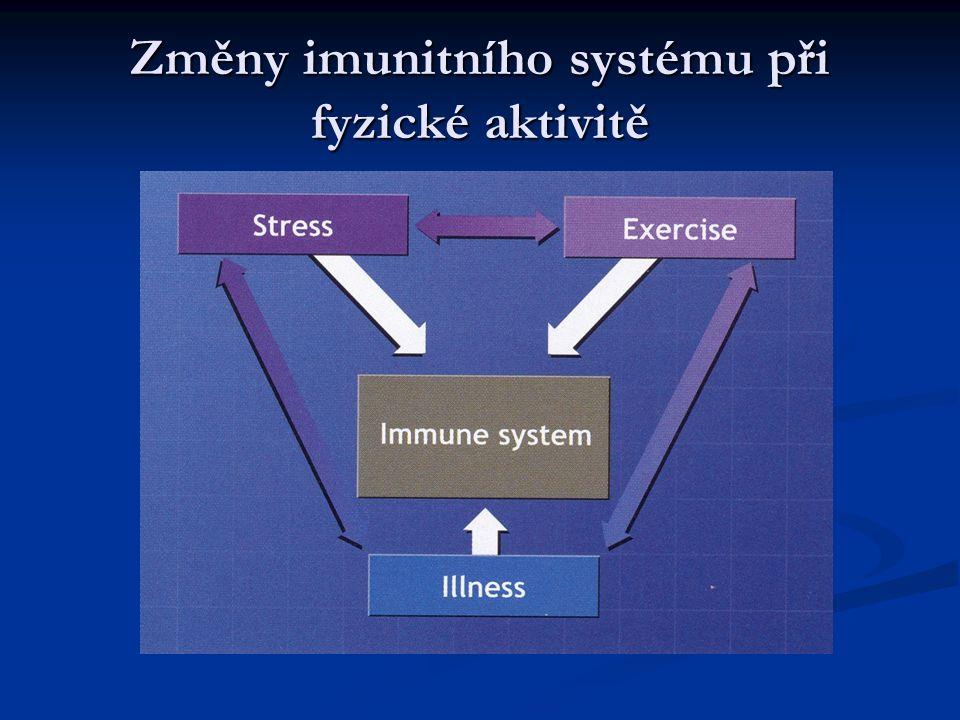 Změny imunitního systému při fyzické aktivitě