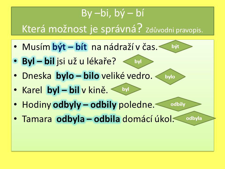 By –bi, bý – bí Která možnost je správná Zdůvodni pravopis.