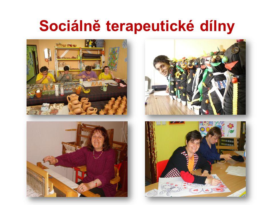 Sociálně terapeutické dílny