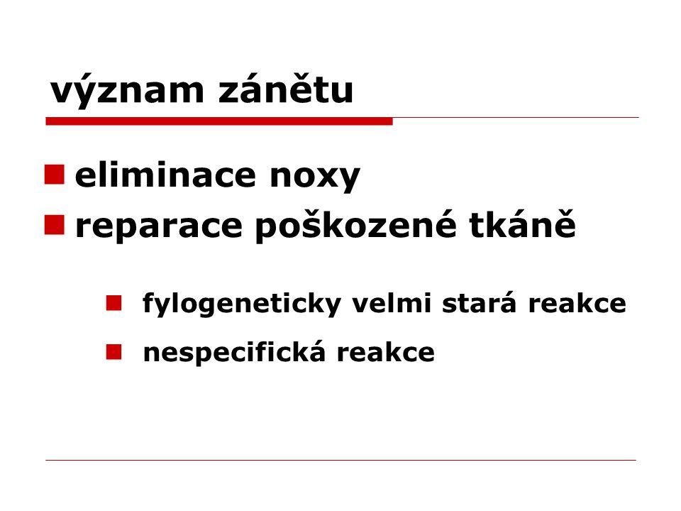 význam zánětu eliminace noxy reparace poškozené tkáně