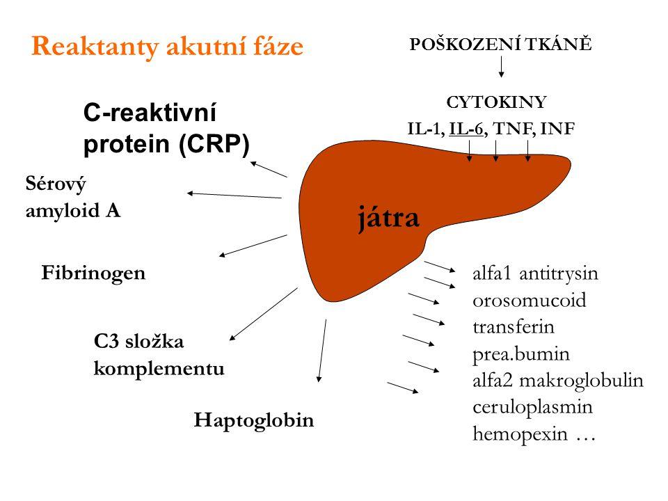 játra Reaktanty akutní fáze C-reaktivní protein (CRP) Sérový amyloid A