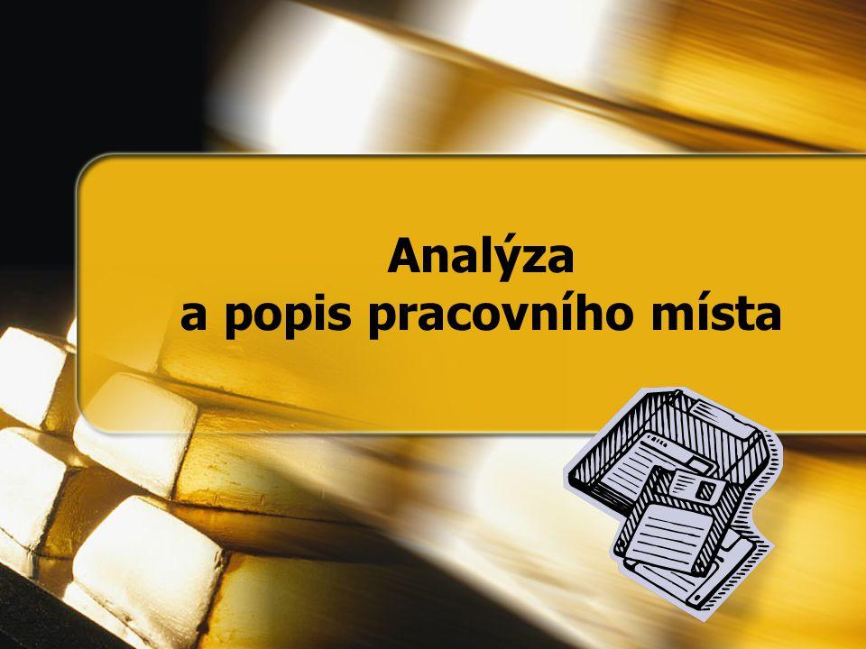 Analýza a popis pracovního místa