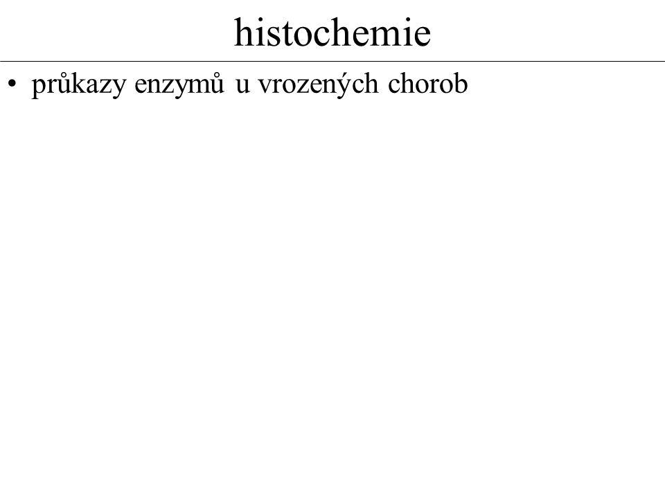 histochemie průkazy enzymů u vrozených chorob