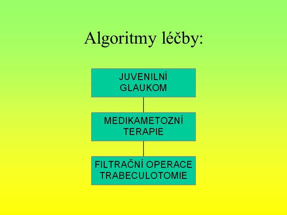 Algoritmy léčby: