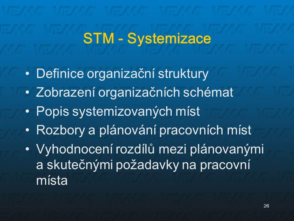 STM - Systemizace Definice organizační struktury