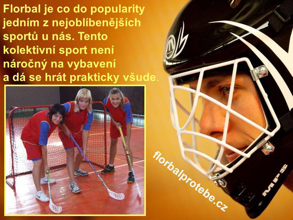 Florbal je co do popularity jedním z nejoblíbenějších sportů u nás
