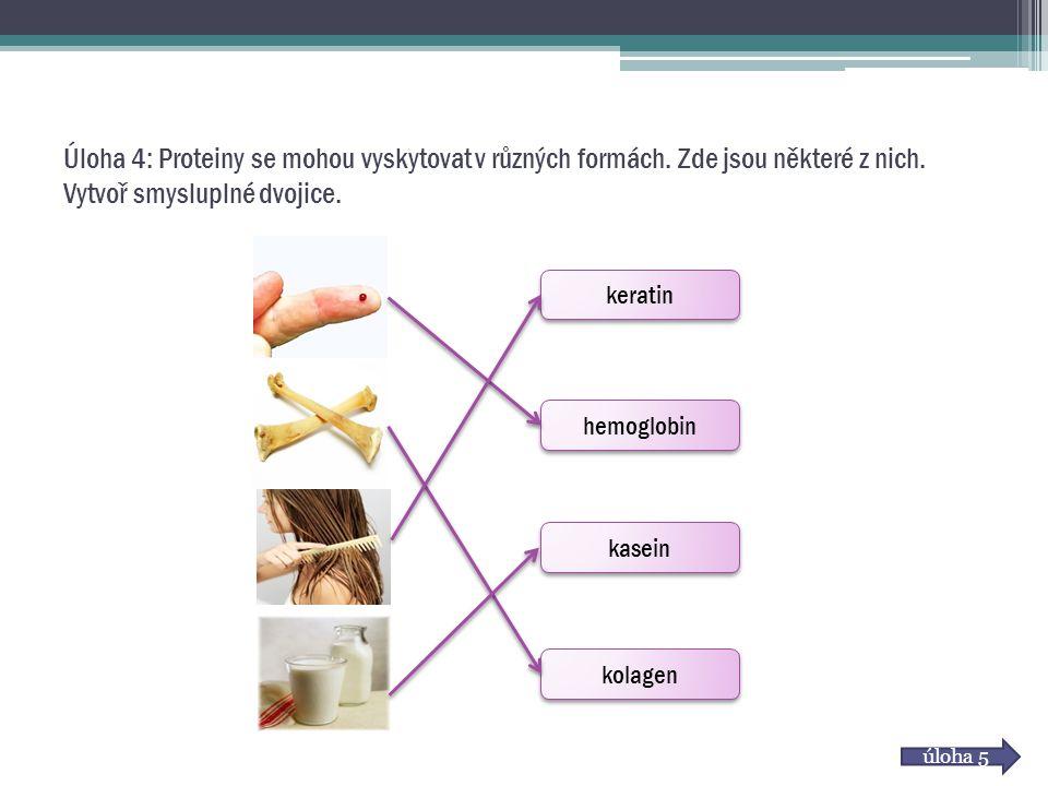 Úloha 4: Proteiny se mohou vyskytovat v různých formách
