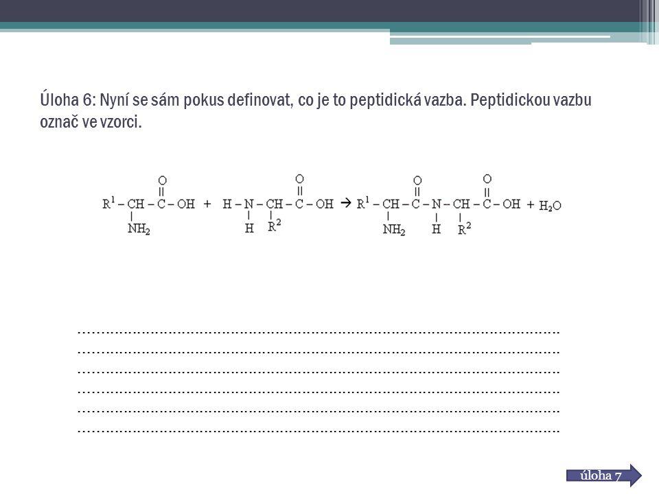 Úloha 6: Nyní se sám pokus definovat, co je to peptidická vazba