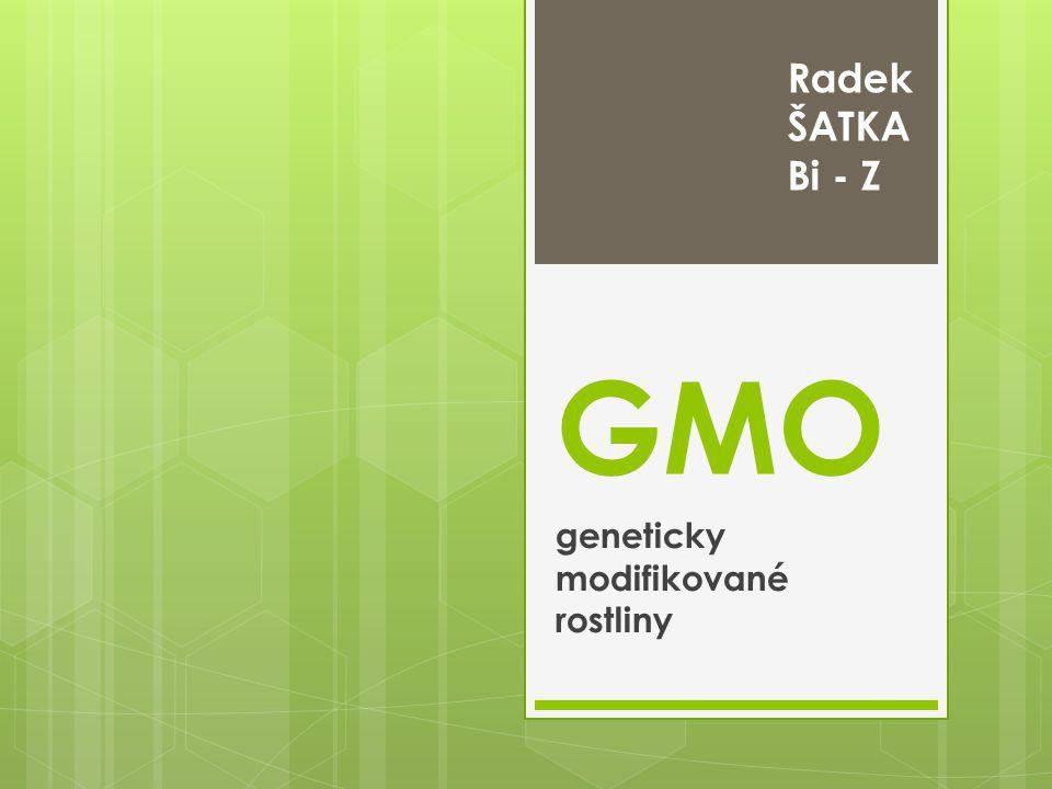 geneticky modifikované rostliny