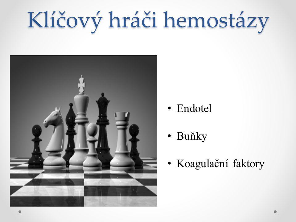 Klíčový hráči hemostázy