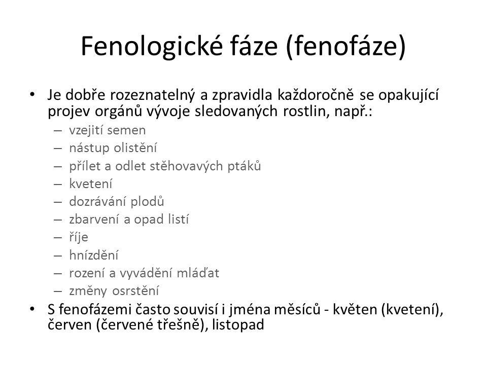 Fenologické fáze (fenofáze)