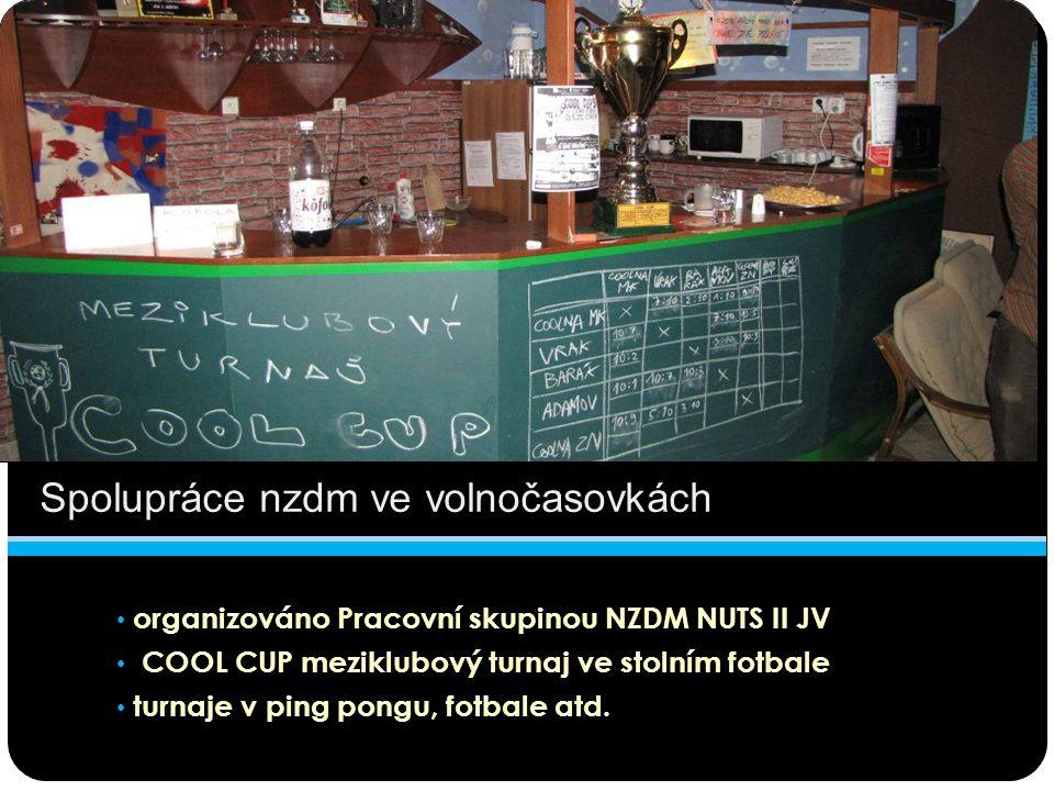 organizováno Pracovní skupinou NZDM NUTS II JV