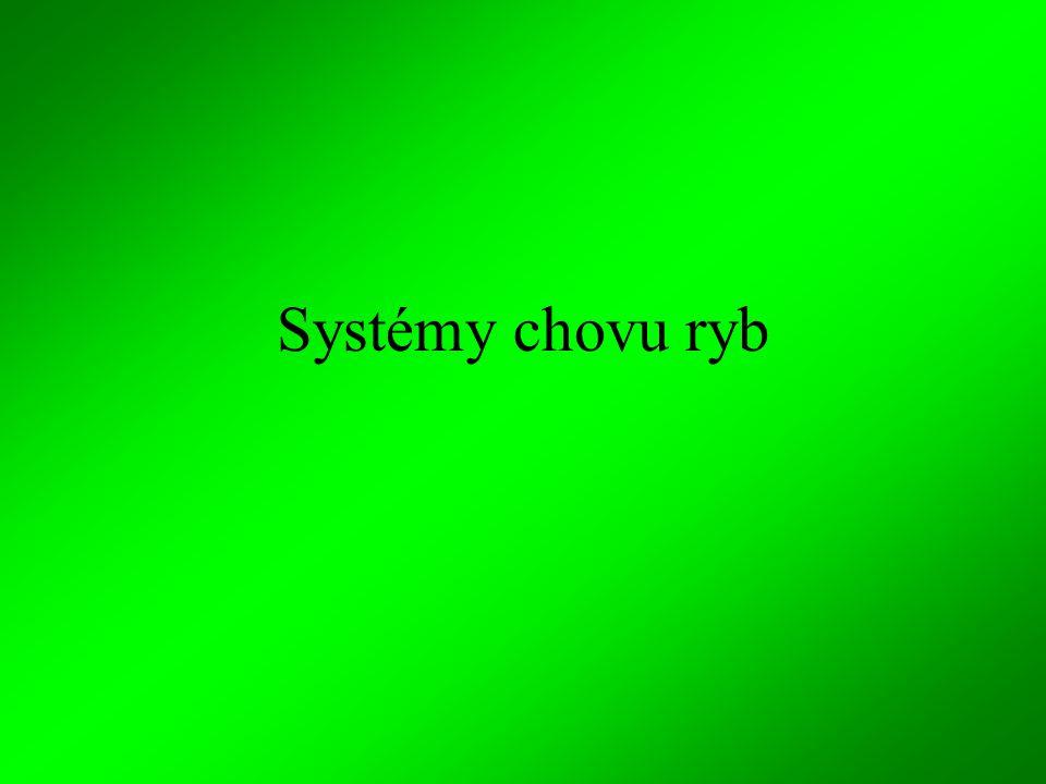 Systémy chovu ryb