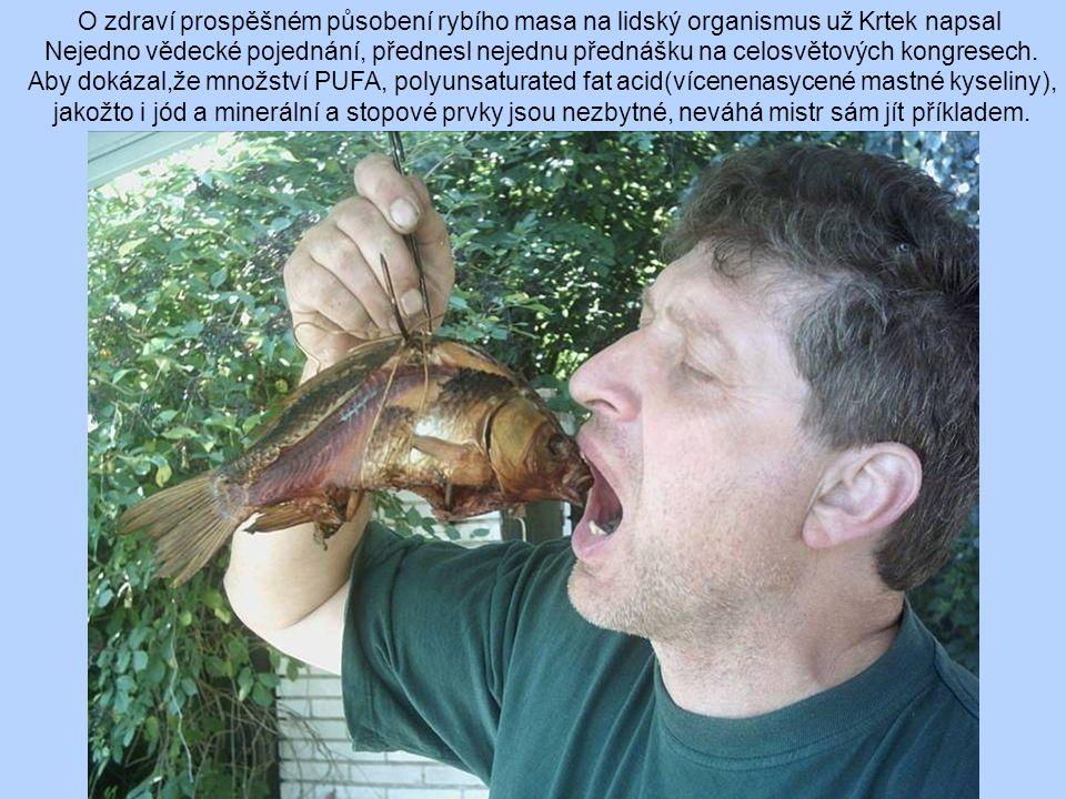 O zdraví prospěšném působení rybího masa na lidský organismus už Krtek napsal
