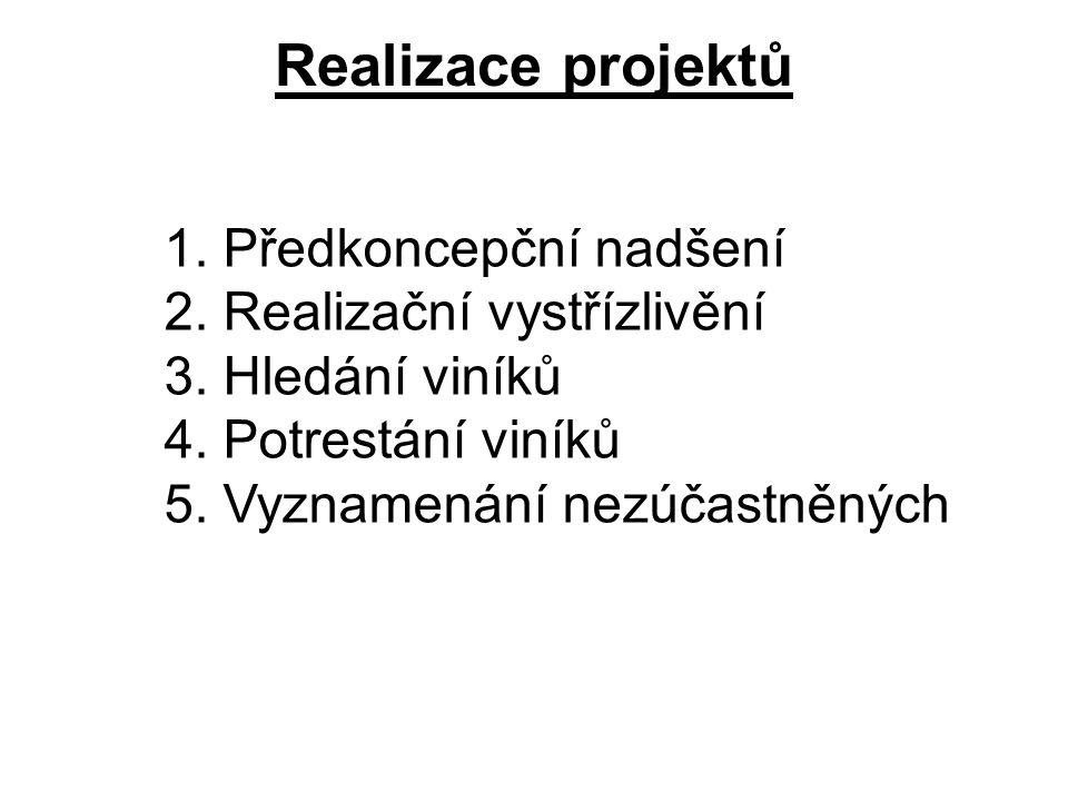 Realizace projektů 1. Předkoncepční nadšení