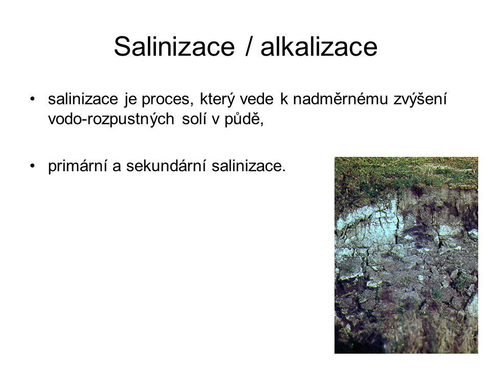 Salinizace / alkalizace