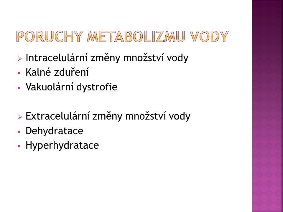 PORUCHY METABOLIZMU VODY