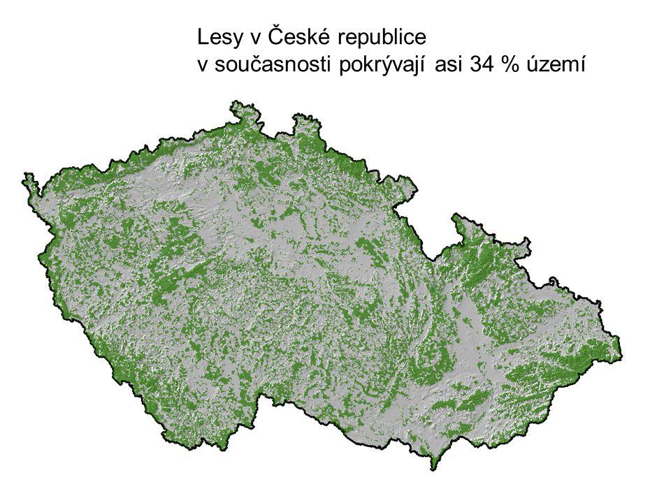 Lesy v České republice v současnosti pokrývají asi 34 % území