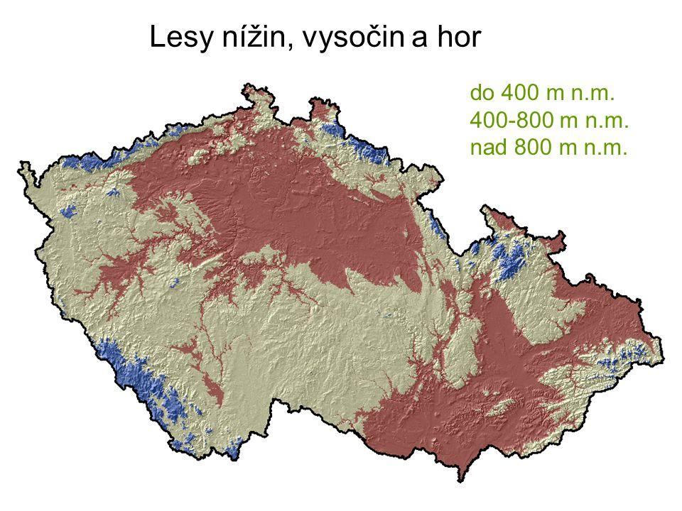 Lesy nížin, vysočin a hor