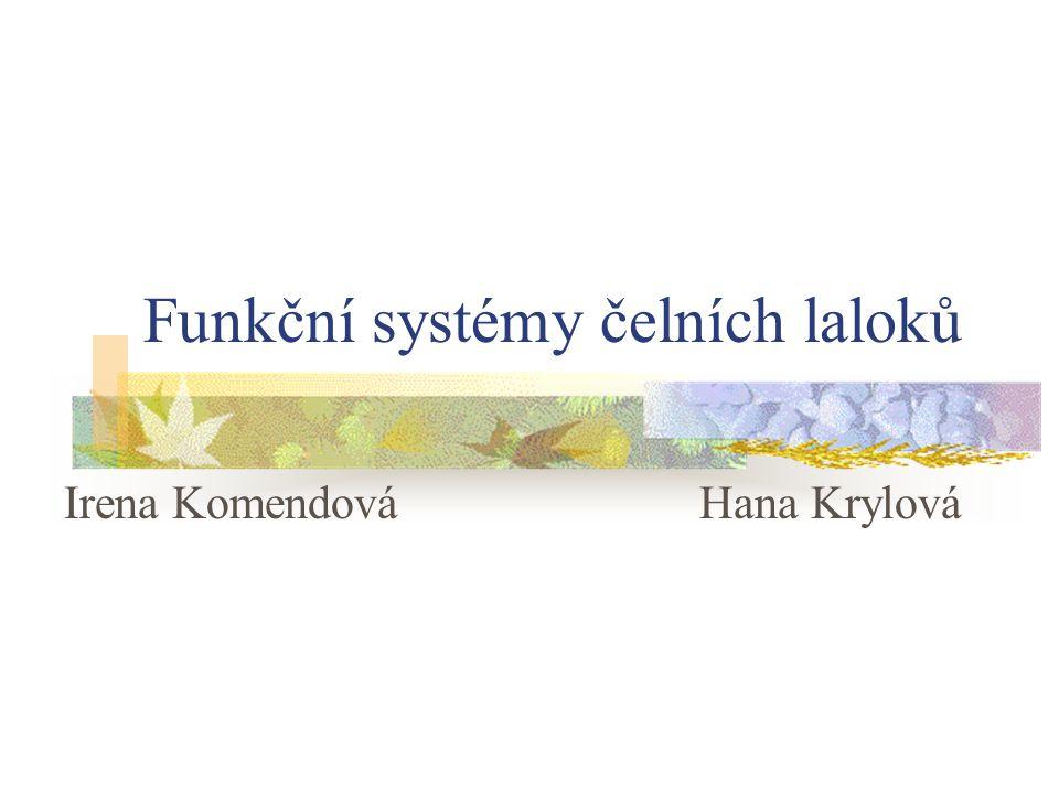 Funkční systémy čelních laloků