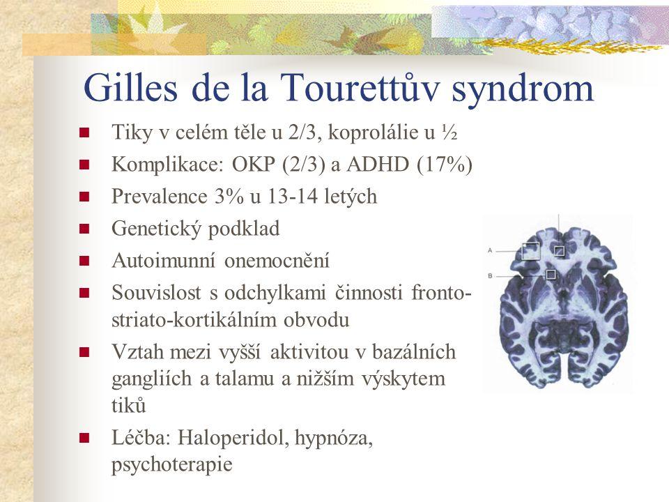 Gilles de la Tourettův syndrom
