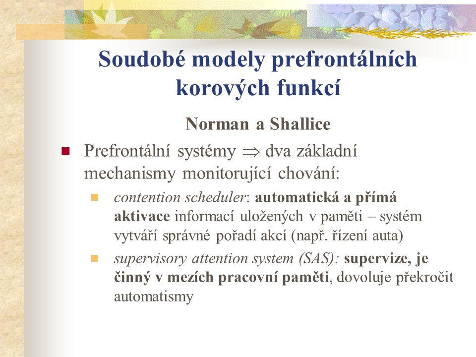 Soudobé modely prefrontálních korových funkcí