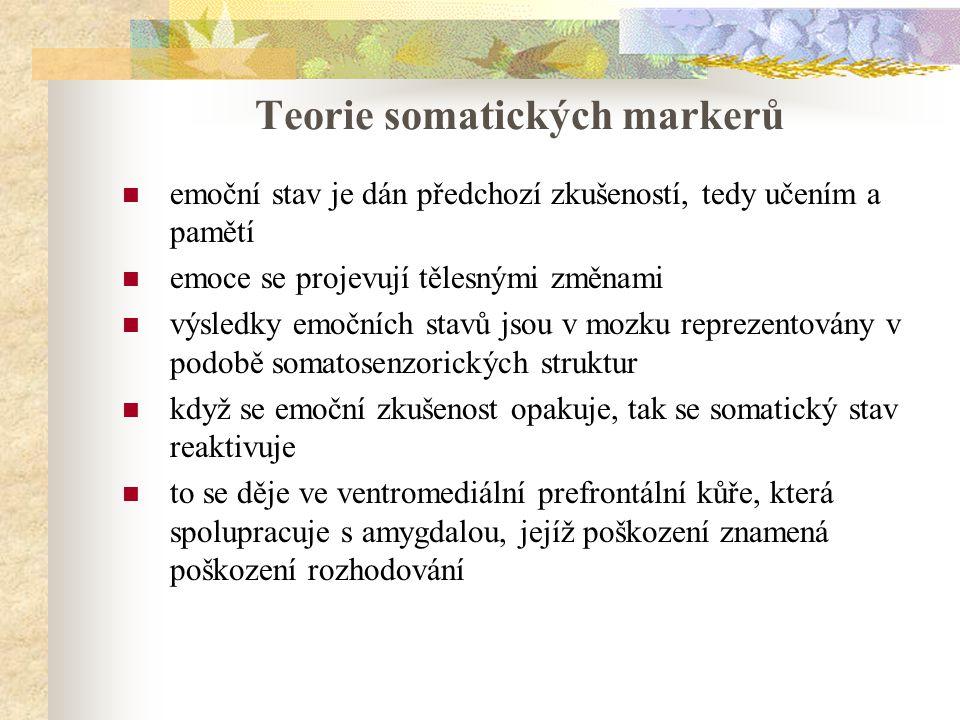 Teorie somatických markerů