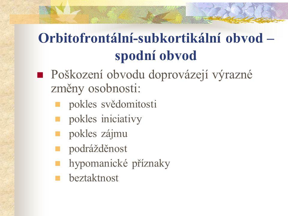 Orbitofrontální-subkortikální obvod – spodní obvod
