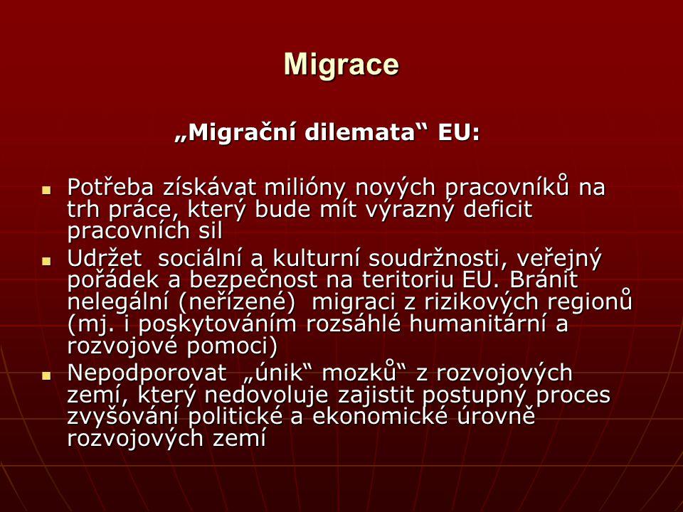 """Migrace """"Migrační dilemata EU:"""