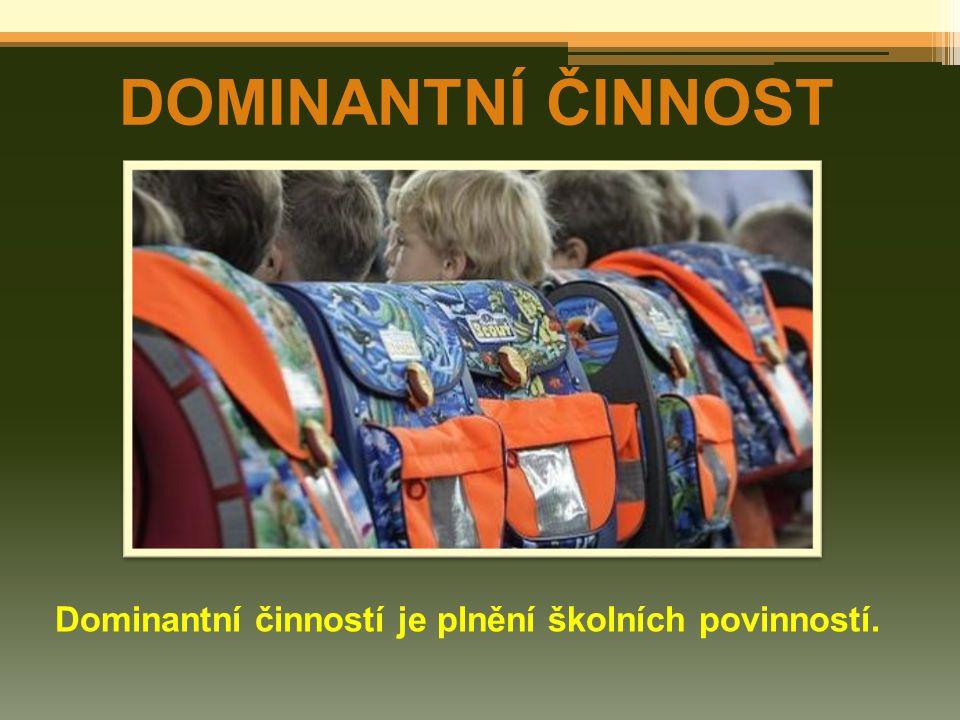 Dominantní činností je plnění školních povinností.