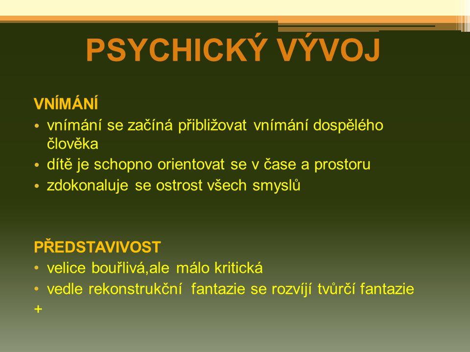 PSYCHICKÝ VÝVOJ VNÍMÁNÍ