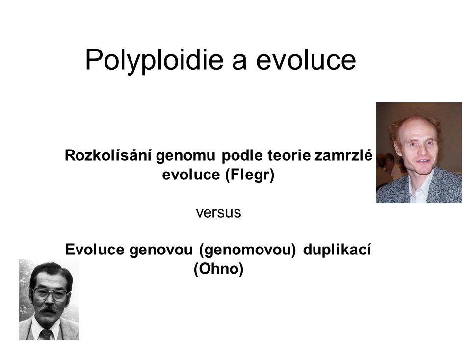 Polyploidie a evoluce Rozkolísání genomu podle teorie zamrzlé