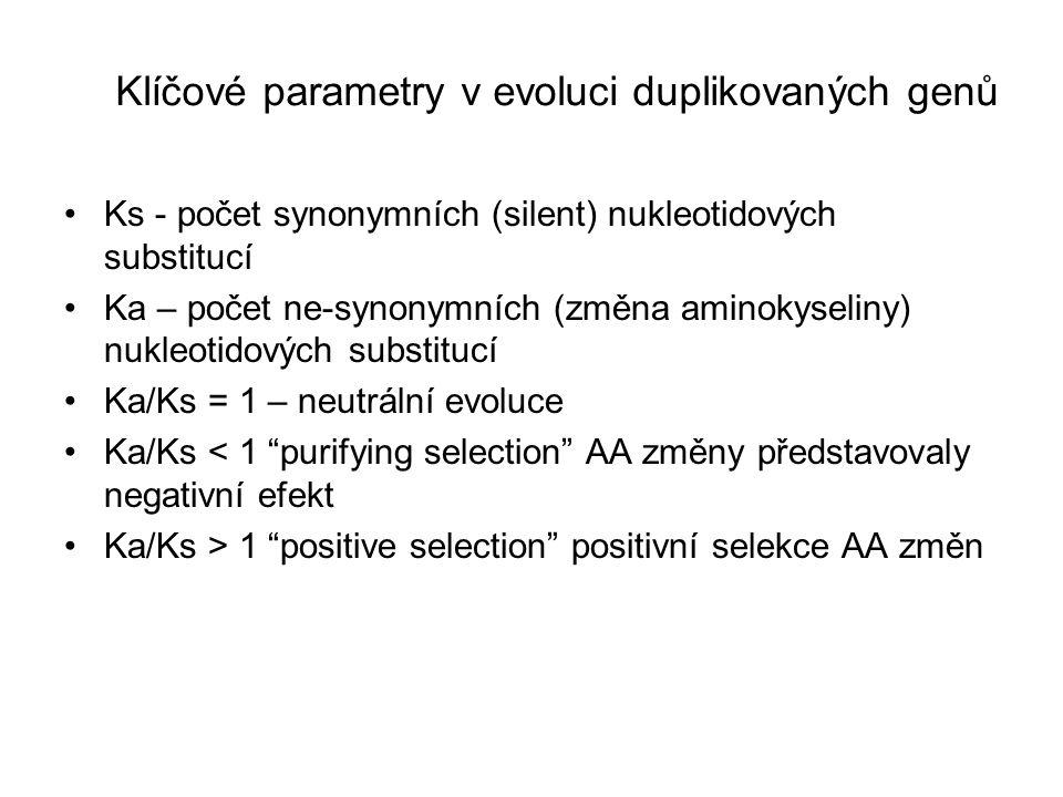 Klíčové parametry v evoluci duplikovaných genů