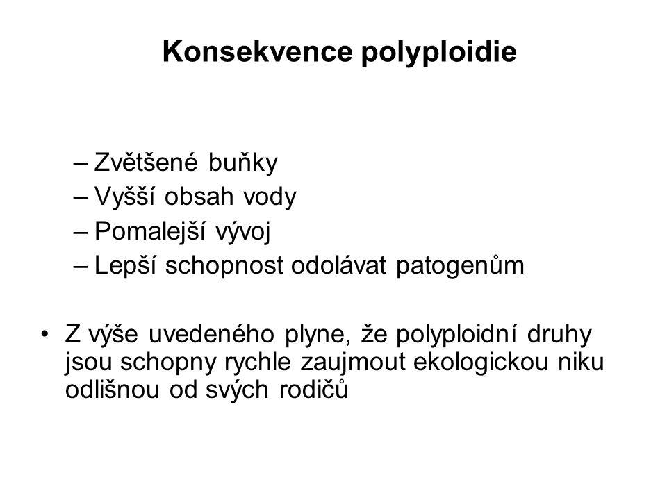 Konsekvence polyploidie