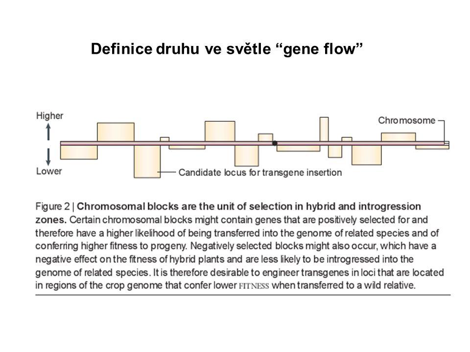 Definice druhu ve světle gene flow