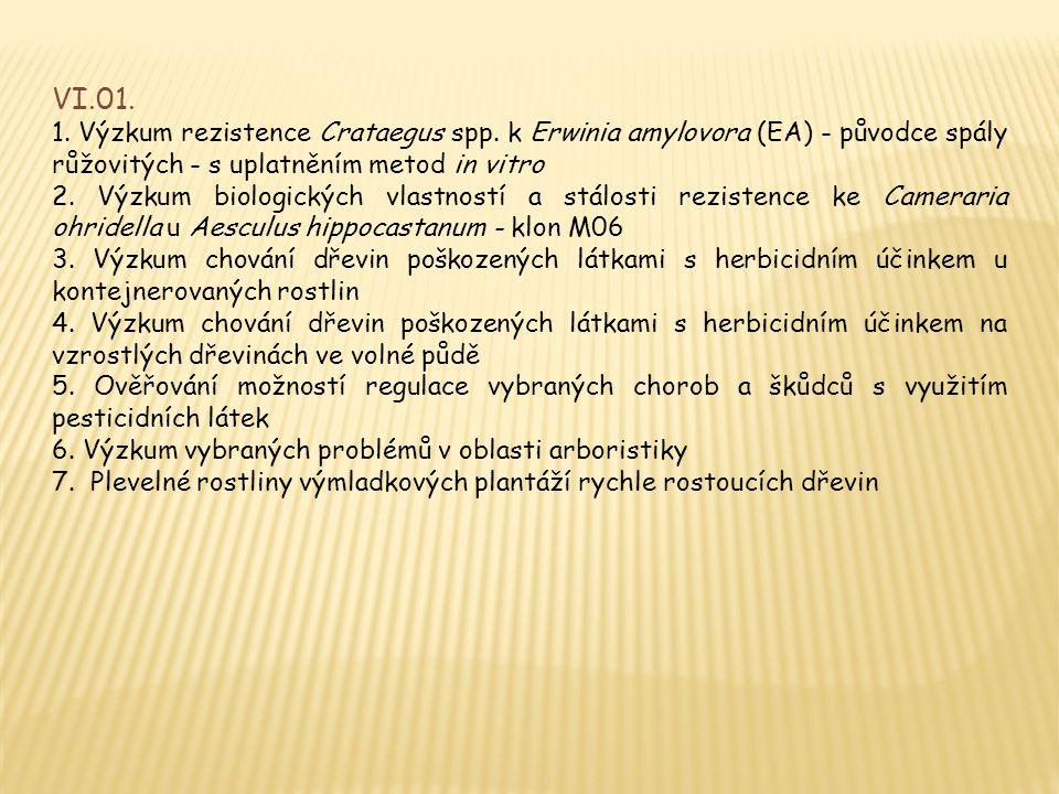 VI.01. 1. Výzkum rezistence Crataegus spp. k Erwinia amylovora (EA) - původce spály růžovitých - s uplatněním metod in vitro.
