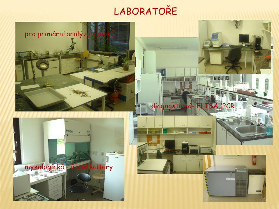 LABORATOŘE pro primární analýzu vzorků diagnostická– ELISA, PCR