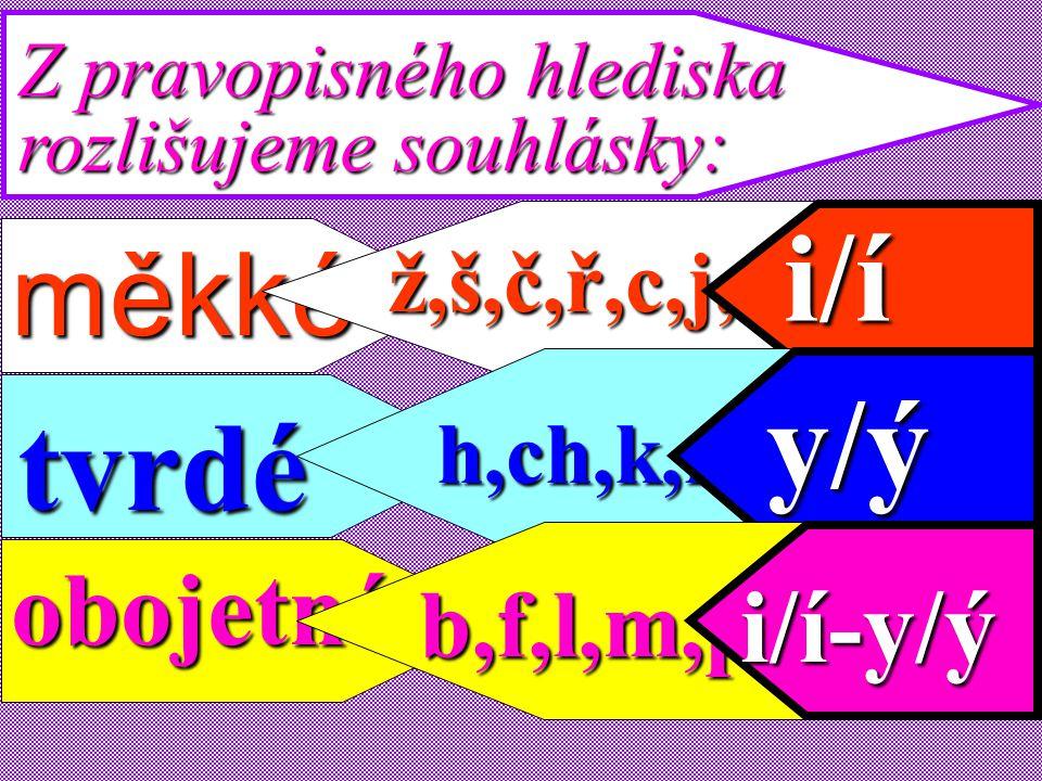 i/í y/ý tvrdé měkké obojetné i/í-y/ý b,f,l,m,p,s,v,z,