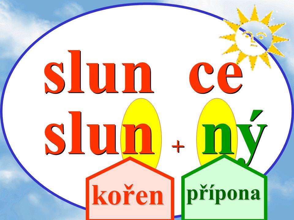 slun ce slun + ný kořen přípona