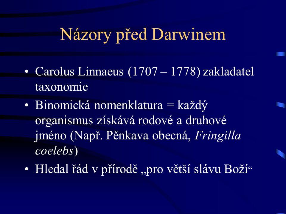 Názory před Darwinem Carolus Linnaeus (1707 – 1778) zakladatel taxonomie.